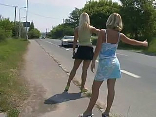 Hitchhiker Chicks