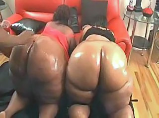 Ass BBW Doggystyle Ebony Groupsex Oiled