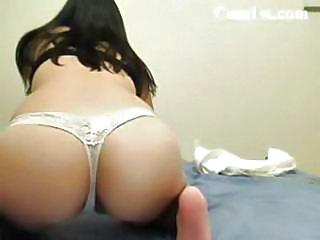 Ass Bus Panty Webcam