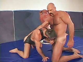 Bear Wrestling Orgy