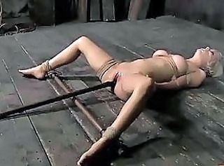 Bdsm Bondage Insertion