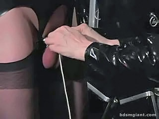 Bdsm Femdom Latex Stockings