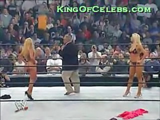 Torrie Wilson In A Very Little B...
