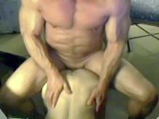 Gay Muscled
