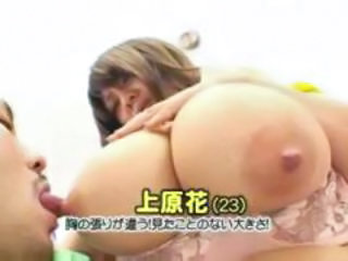 Asian BBW Big Tits Bus Japanese MILF Natural Nipples