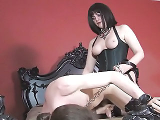 Leashed and fucked