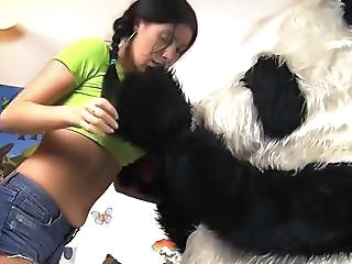 Awesome Dark Haired Has Real Shag Together With Panda Bear