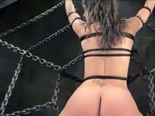 Ass Bdsm Bondage