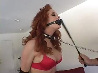 Audrey Hollander Gets Tied Up And Then Sucks And Ass Fucks