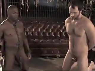 Two slaves for the mistress- second round - xHamster.com