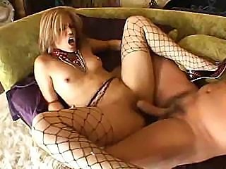 Big cock Fetish Fishnet Hardcore Small Tits Teen