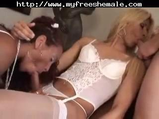 Lucky Shemale Bitch 3some