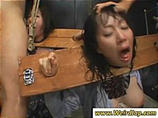 Asian Bdsm Hardcore Mature