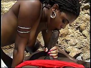 Catfight Club Sex On The Beach