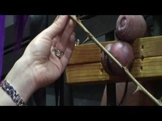 Serious Cock And Ball Torture...