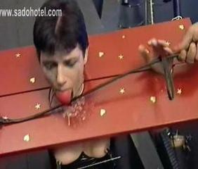 Tit torture and clamps