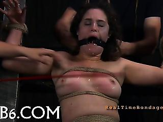 Stormy Caning For Lusty Honey