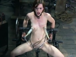 Bdsm Machine